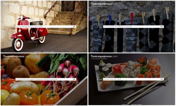 Visuel 1 Toutcequejeveux.com - Conciergerie par sms, email, facebook, twitter.JPG